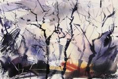 january-trees-1