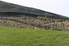 Jeff Teasdale Folding Landscape Wall,Teggs Nose Country Park[2]