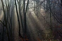 seven_rays_-_chadkirk_nr_marple1